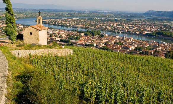 Wine & Food of the Rhone & Burgundy – 5th June